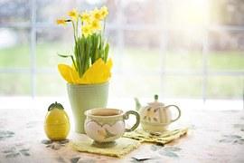 daffodils-1316127__180