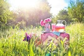 pink-lemonade-795030__180