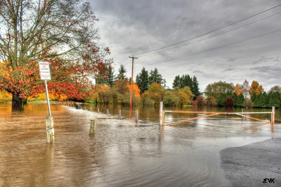 flood-63832_1920