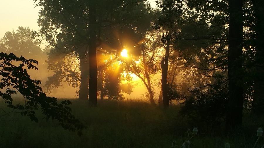 sunrise-1803980_1920