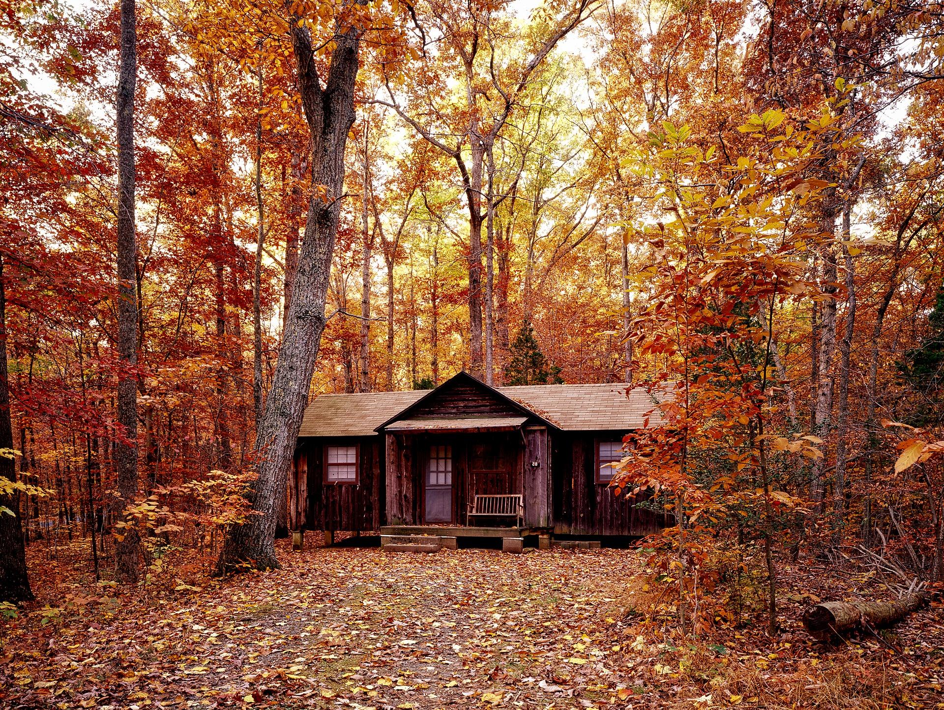 autumn-1740686_1920